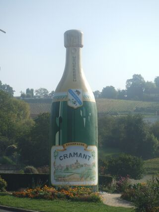 2010_1015フランスワイン旅行02341