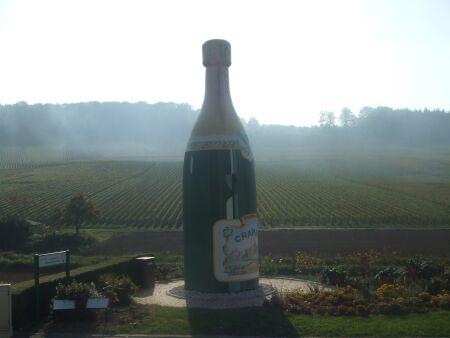 2010_1015フランスワイン旅行02351