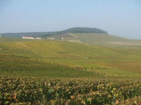 2010_1015フランスワイン旅行02431