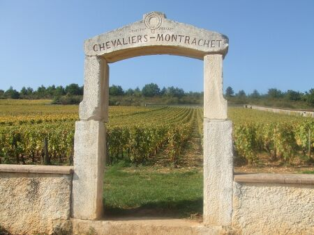 2010_1015フランスワイン旅行01981