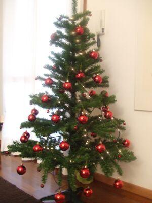 2010_1201雪の日&クリスマスの飾り付け01841