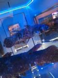 searab.jpg