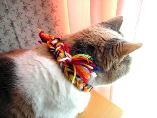 三つ編み1