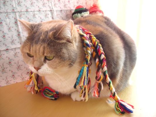 三つ編み3