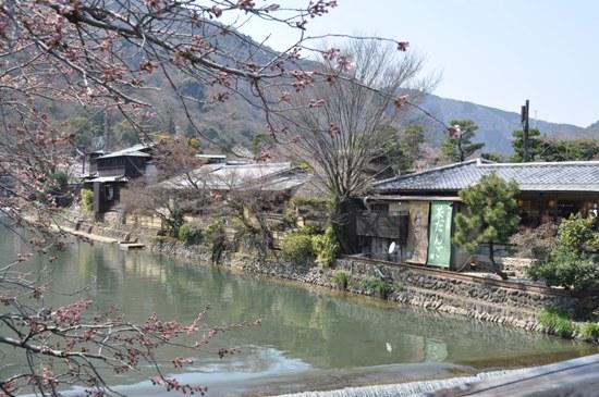 嵐山2012年4月1