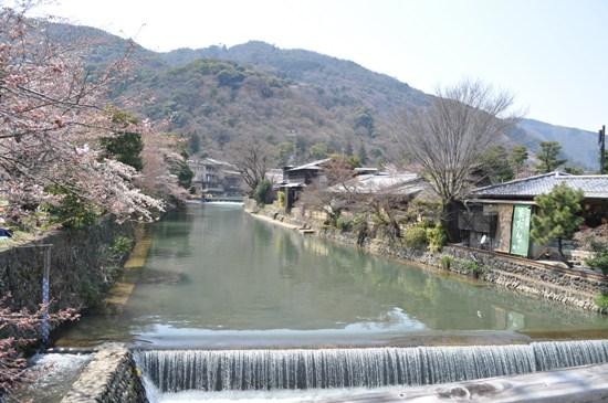嵐山2012年4月2