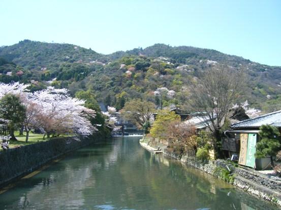 嵐山2010年4月1