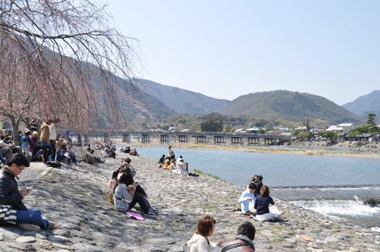 嵐山2012年4月4