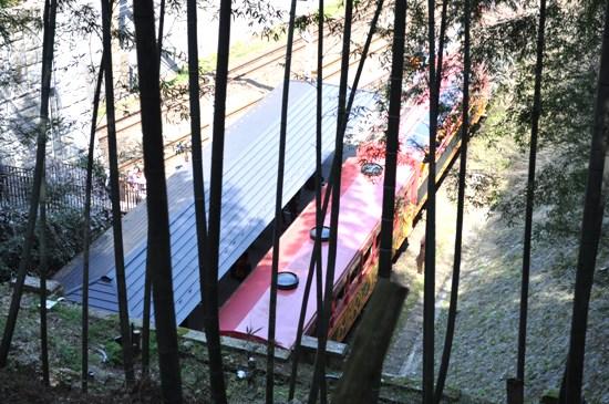 嵐山2012年4月17