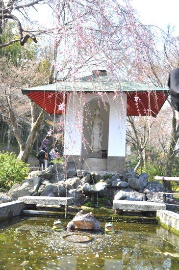 嵐山2012年4月21