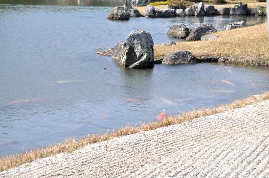 嵐山2012年4月24