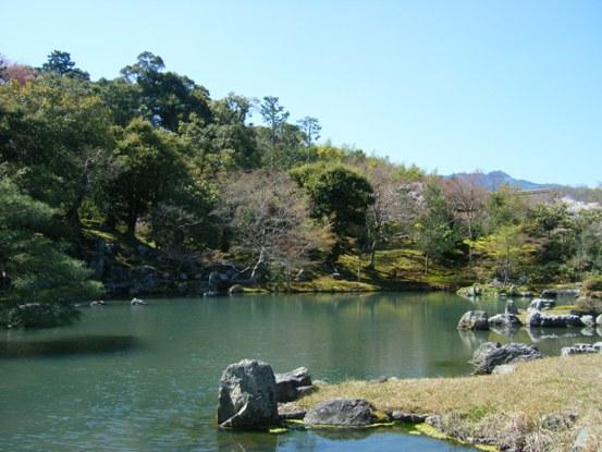 嵐山2010年4月4
