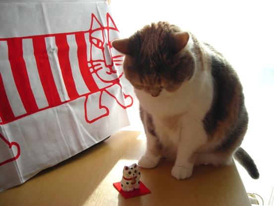 みーこと招き猫2