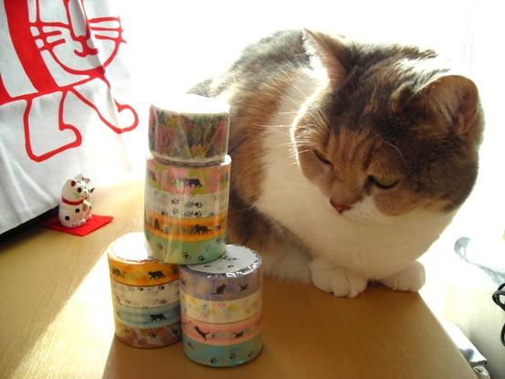 マスキングテープと招き猫とみーこ