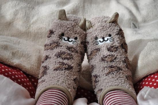 にゃんこ靴下