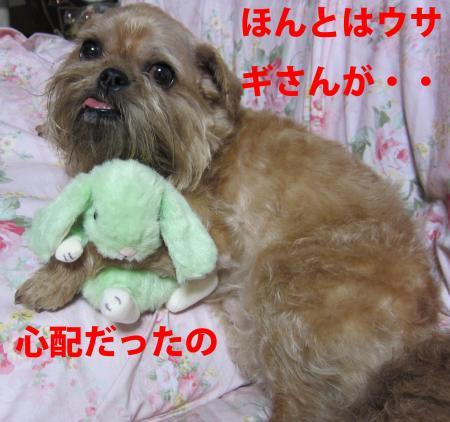 002-1-1-2_convert_20110627012857.jpg