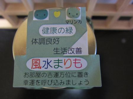 010_convert_20110624164333.jpg
