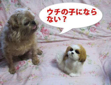 015-1_convert_20110702183711.jpg