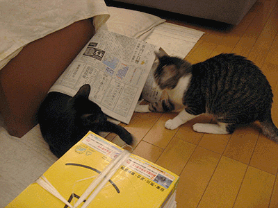 あ~、新聞がくずれたぞ
