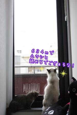 すかいつりー6