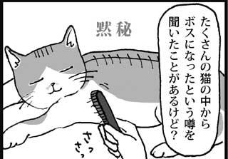 たくさんの猫の中から ボスになったという噂を 聞いたことがあるけど?  黙秘