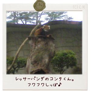 image179.jpg