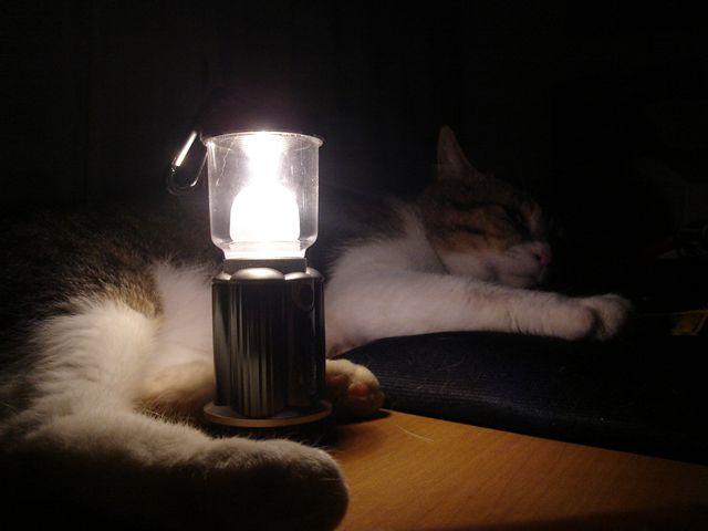 くらやみに光がみえますね..._