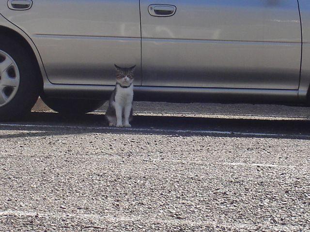 Look at me!_
