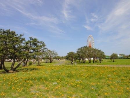 2012-05-13 13-37-19DSC-TX5