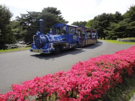 2012-05-13 13-40-17DSC-TX5