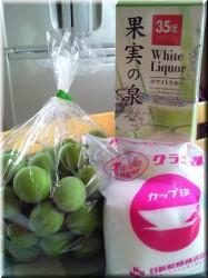 20100609梅酒材料