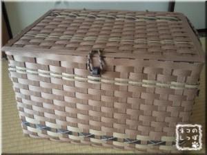 大型BOX