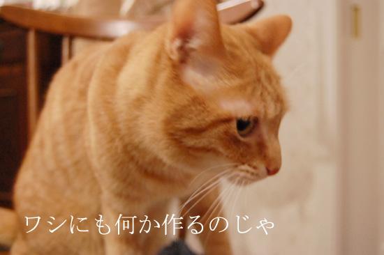 20120128_10.jpg