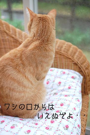 20120503_16.jpg