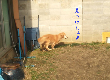 DSC_6509aquow45.jpg