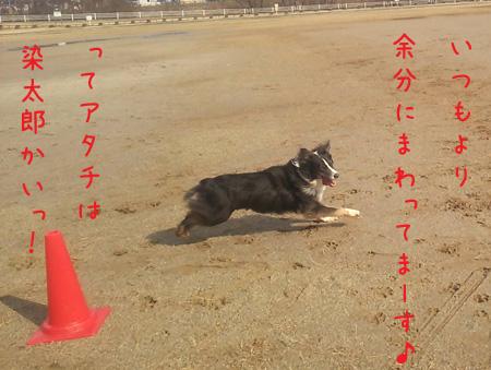 DSC_6545aquow45.jpg