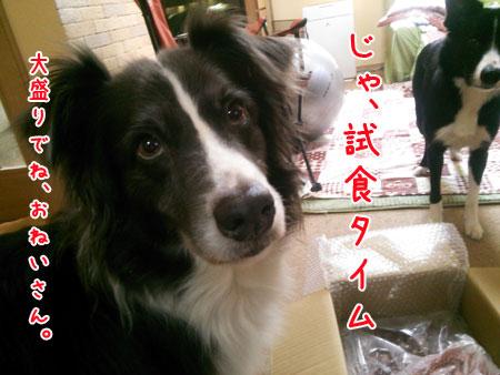 DSC_6768aquow45.jpg