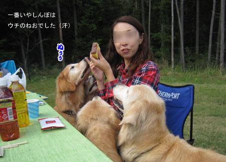 IMG_4318ixy45a.jpg
