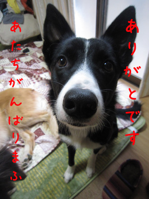 IMG_7128ixy4a.jpg