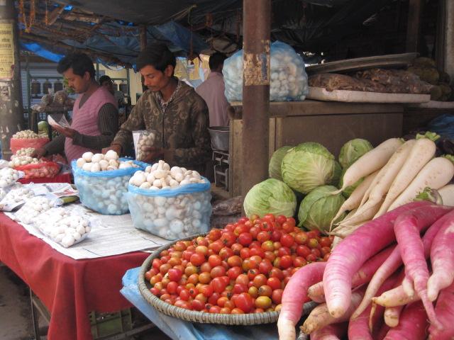 夏野菜の季節 003