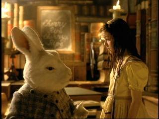 ウサギは可愛い。触りたい。