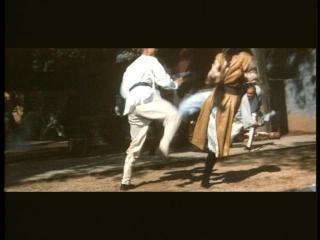 明らかに少林寺拳法の演舞の動き