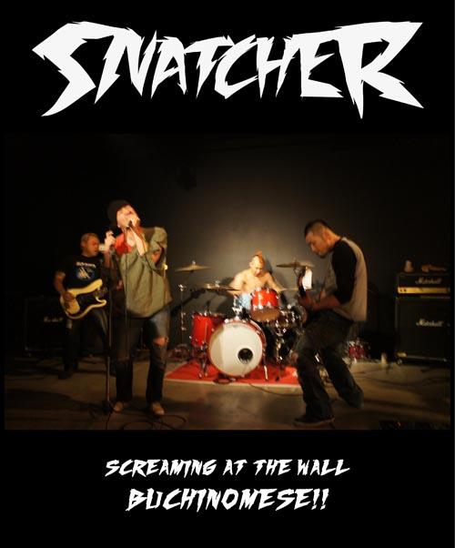snatcher-1.jpg