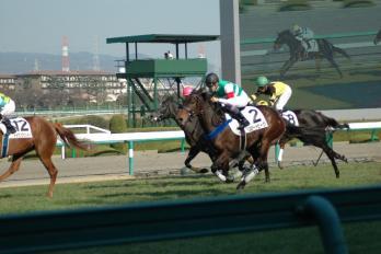 コピー ~ ブロードピーク新馬戦 029