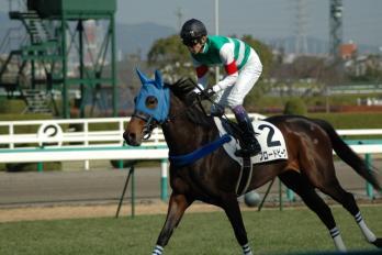 コピー ~ ブロードピーク新馬戦 025