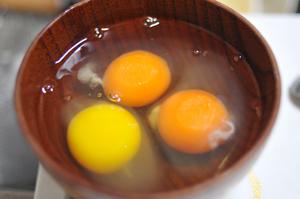 卵の黄身 色の違い