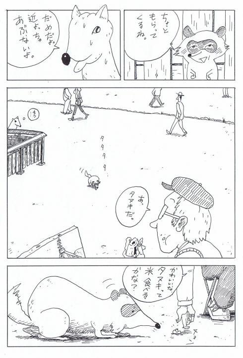 490pxシカとタヌキ8