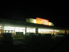 IMGP0015.jpg