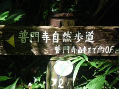 IMGP0932.jpg