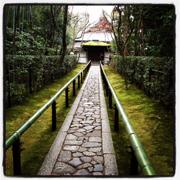 高桐院入り口